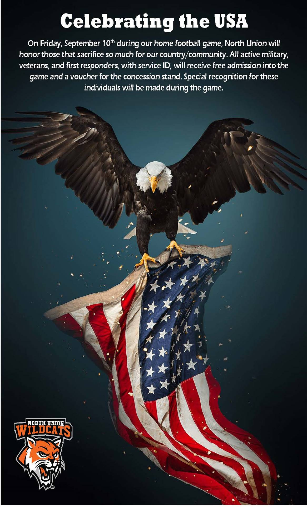 Celebrating the USA
